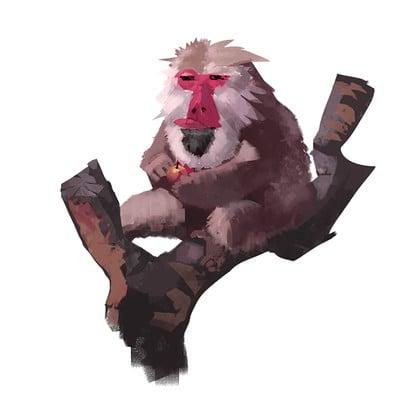 Yu yiming monkey