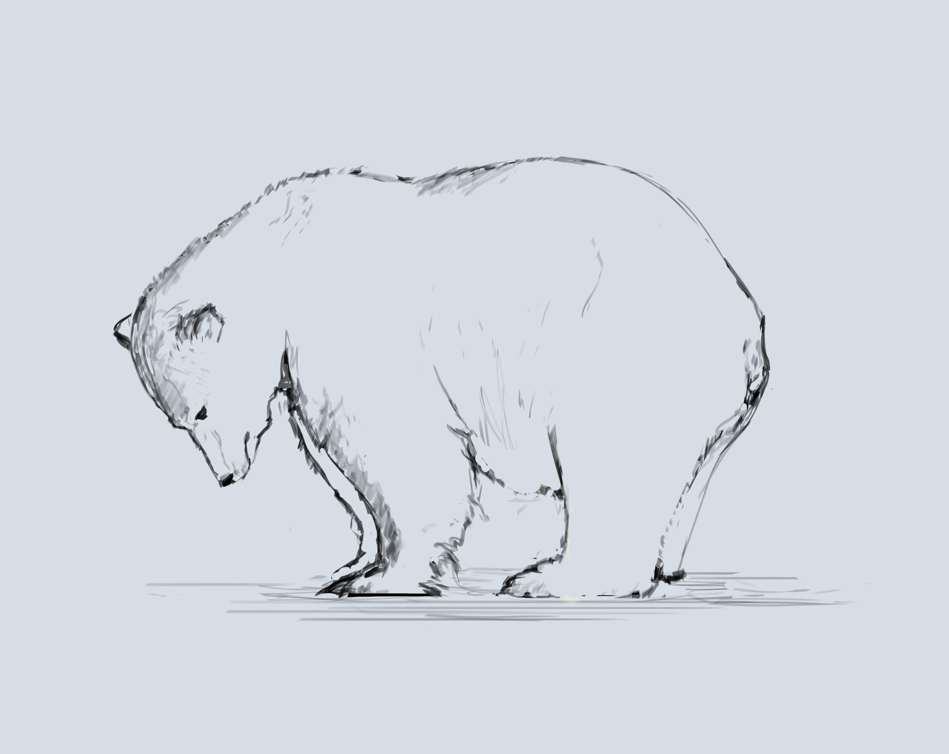 Nicholas hylands polar bear2