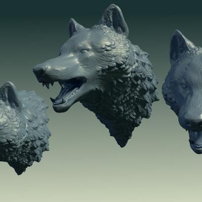 Alexander volynov wolfrender6
