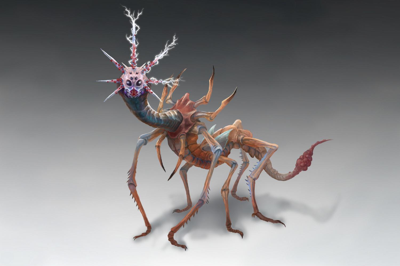 Orm irian thunder bug by catharina wendland