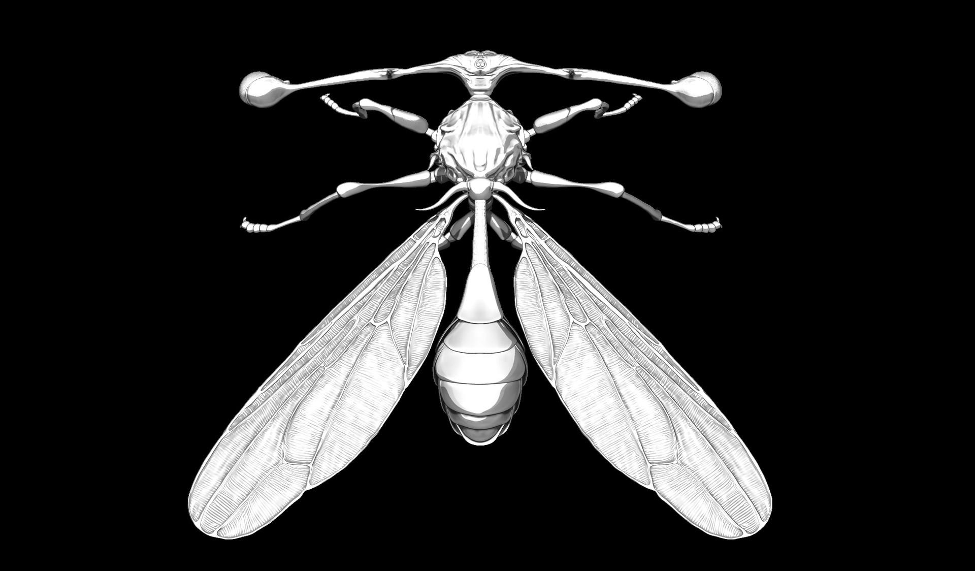 Eric keller stalkeyedfly top