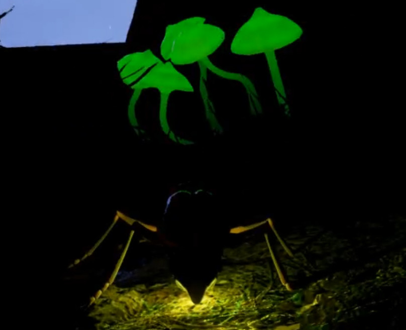 Unreal game play with glowing mushrooms. Player controls firefly movement and flashing