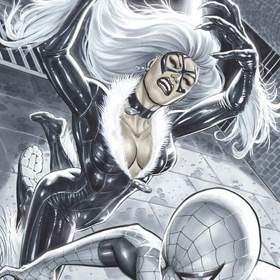 Marco santucci black cat vs spidey