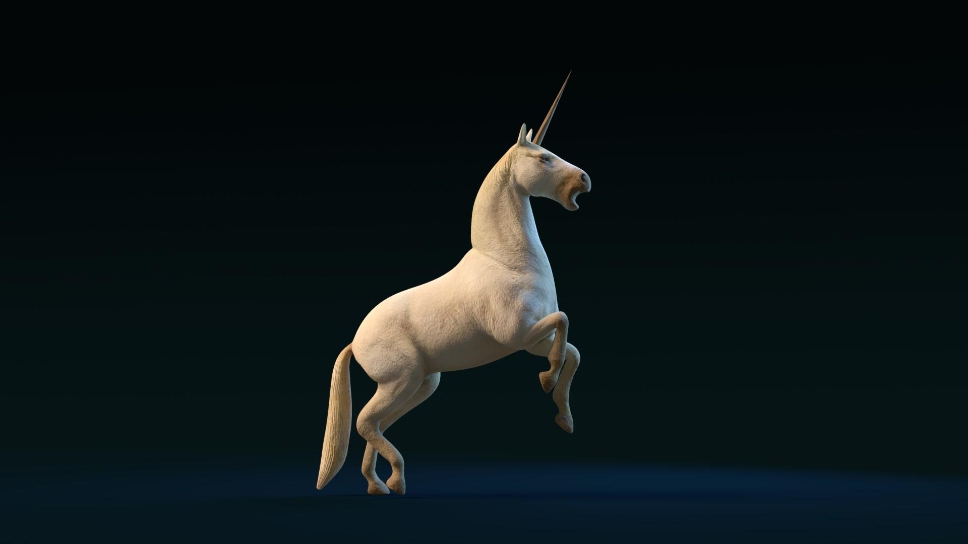 Day7.Unicorn Unicorn Time:1 Hour