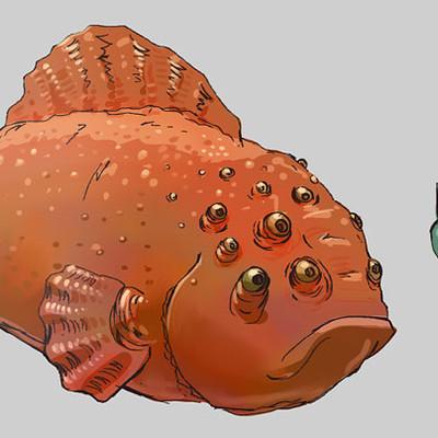 Sebastian arellano fish thumbnails 2