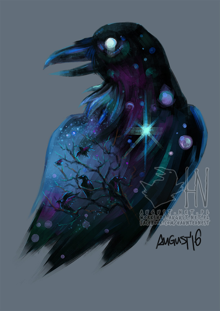 Anna augustyniak 2016 12 28 raven1 copy1
