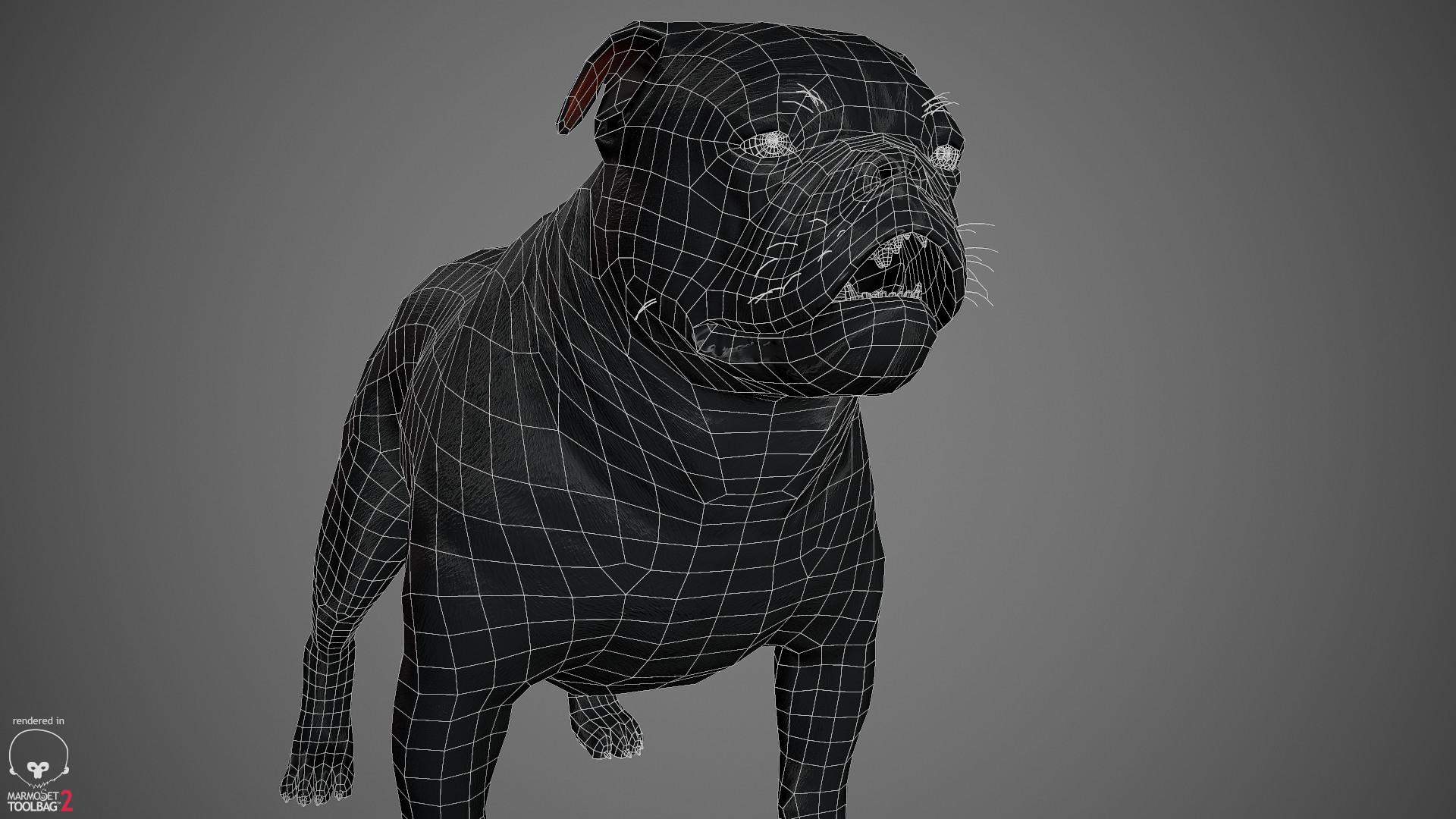 Alex lashko englishbulldog by alexlashko wireframe 05