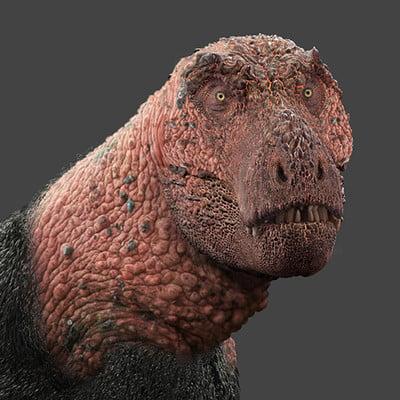 Damir g martin rex concept net vers
