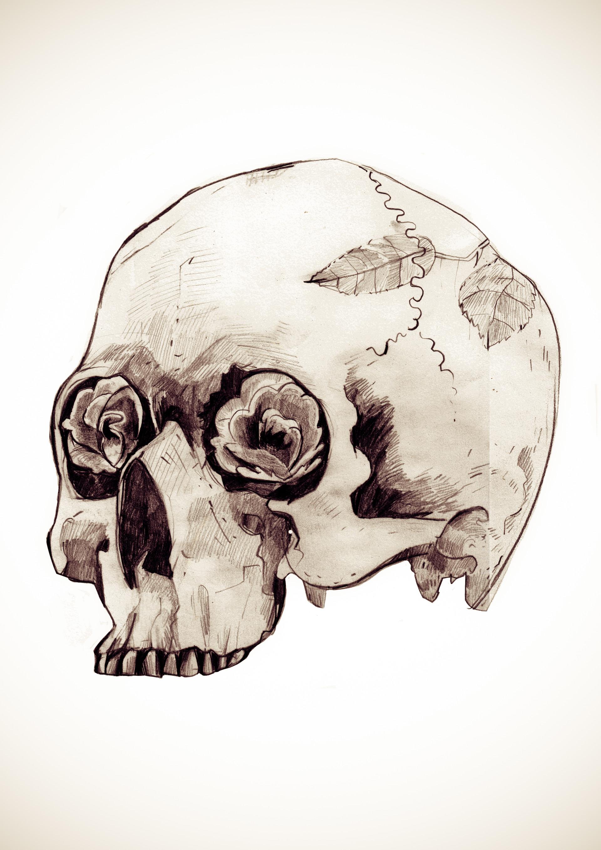 Andy bruyninckx skull latoya flattened 2