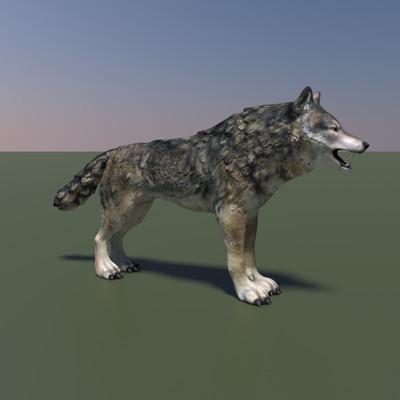 Alexander volynov wolfpresentation9