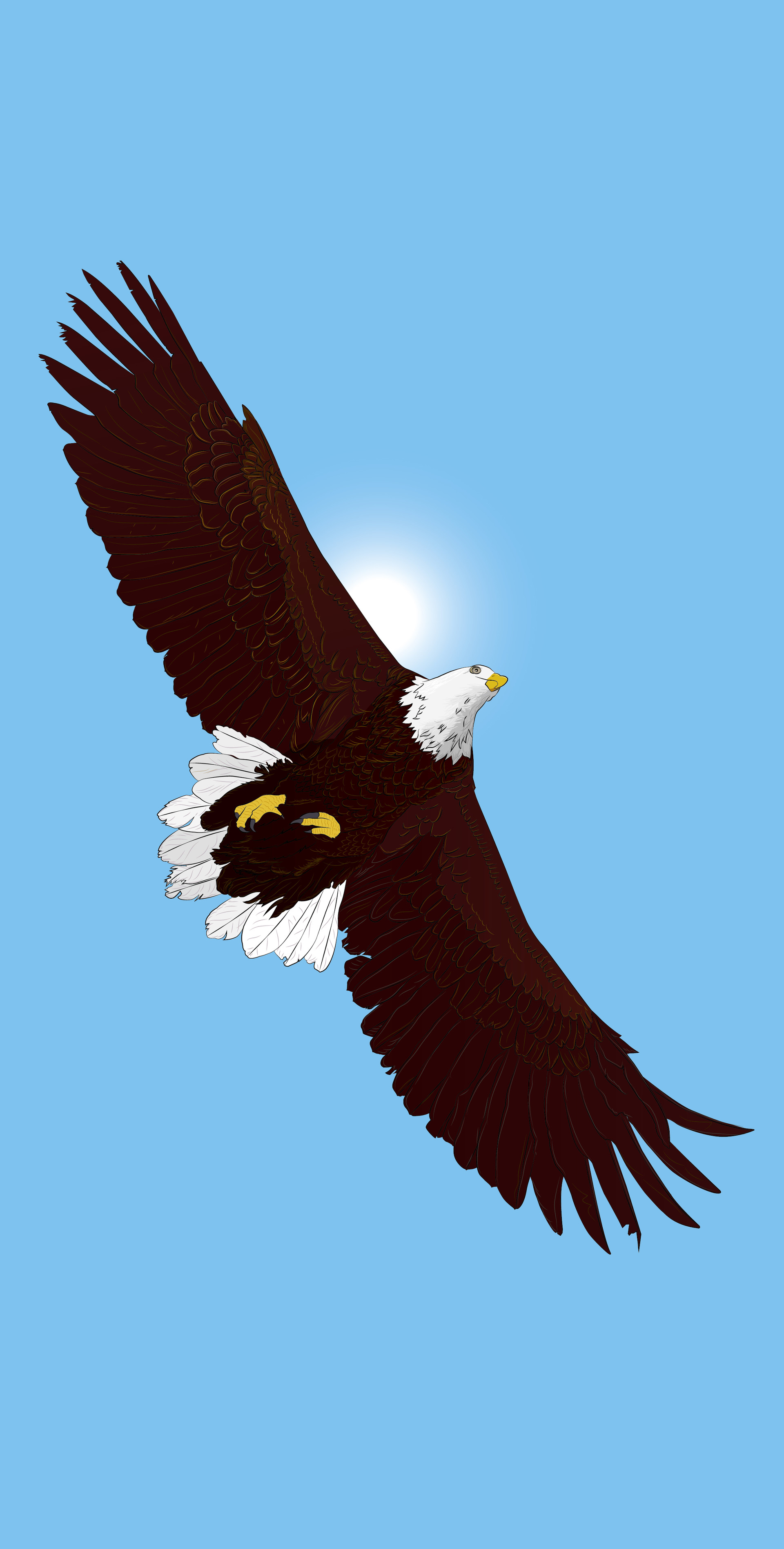 Rajesh sawant eagle color 2 01