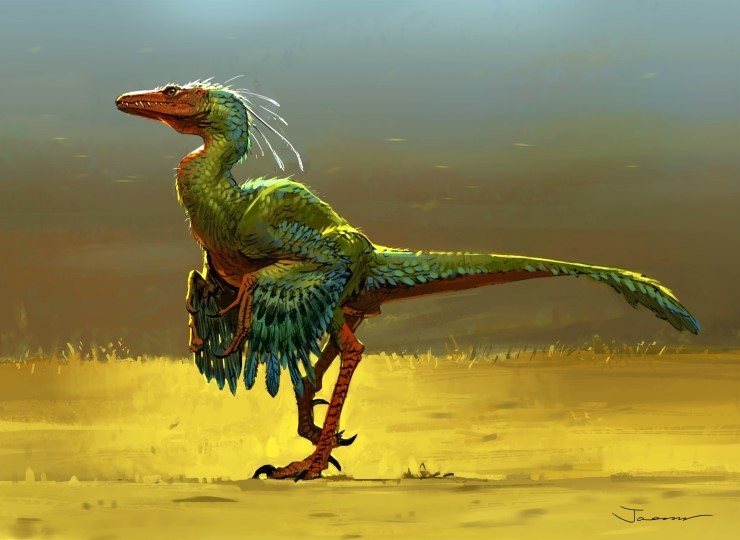 https://cdna.artstation.com/p/assets/images/images/004/606/060/large/jaemin-kim-dino-bird-1.jpg?1484925263