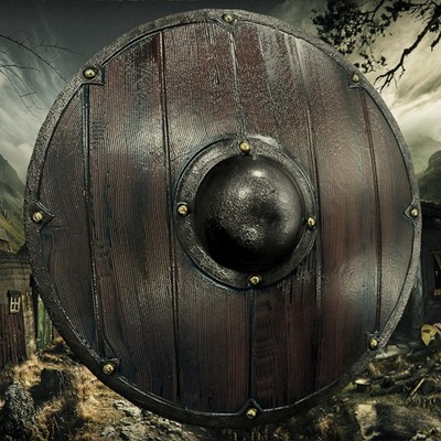 Petar doychev viking shield 1
