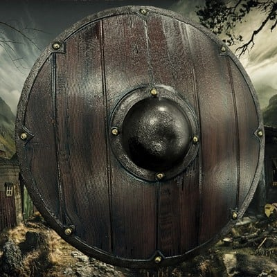 Petar doychev viking shield 1
