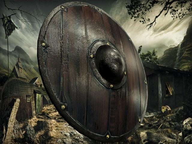 Petar doychev viking shield 4