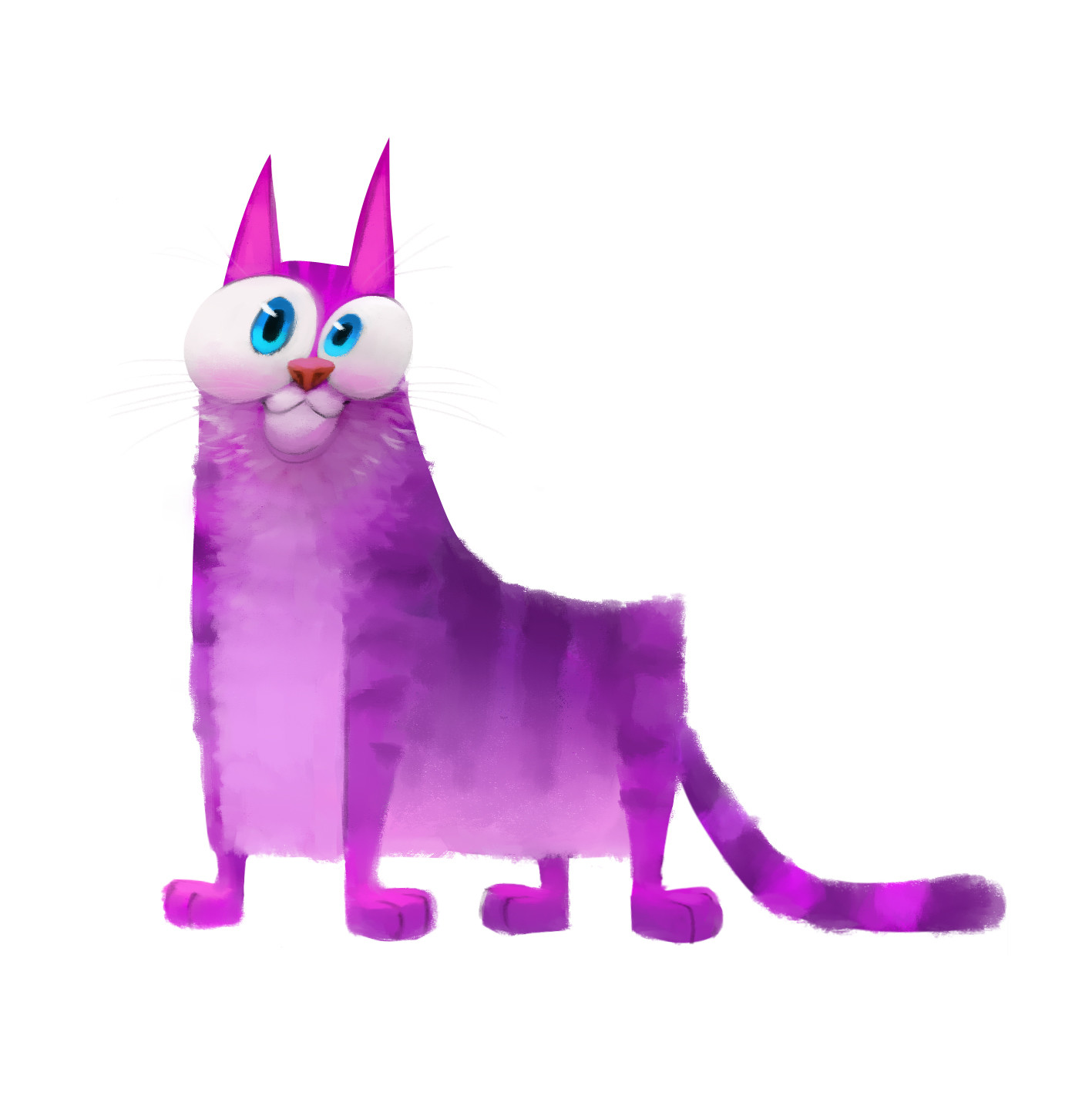 Sam nassour purpcat