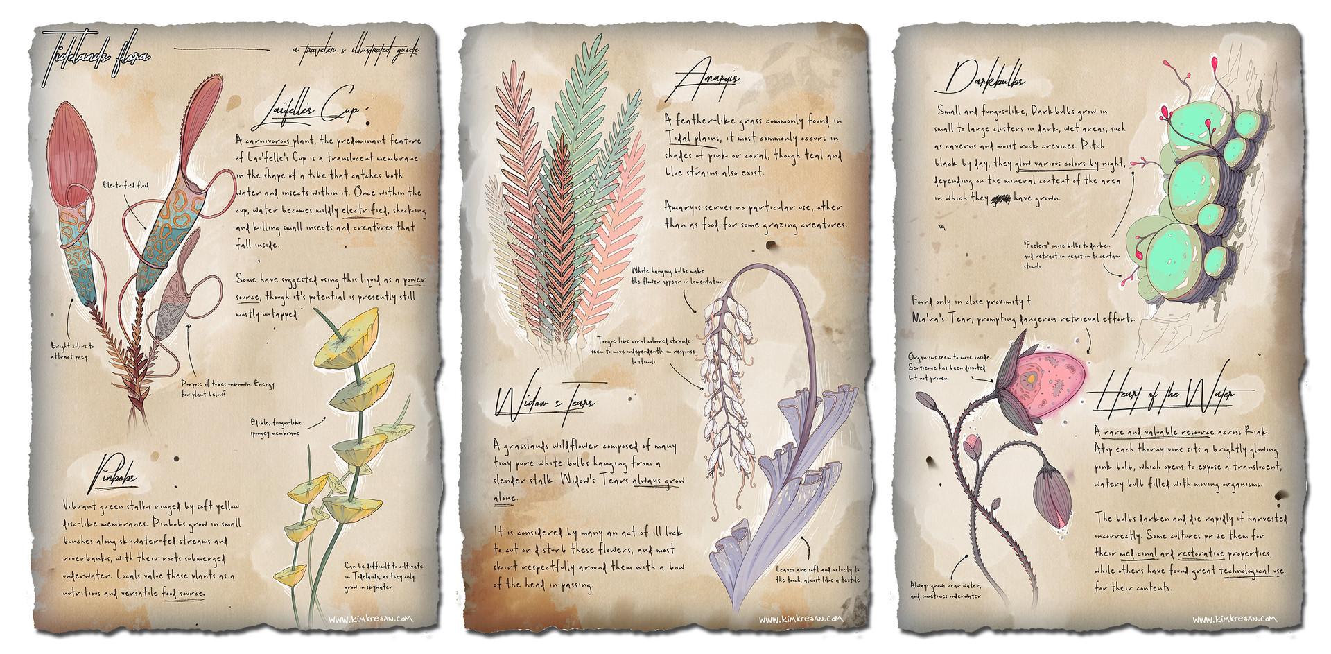 Kim kresan riak tide plant guide web