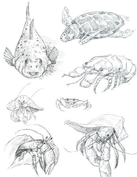 Caleb prochnow sketch15