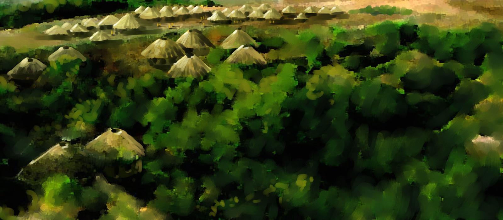 Village overhead