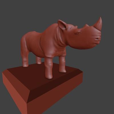 Johna aae 15 rhino