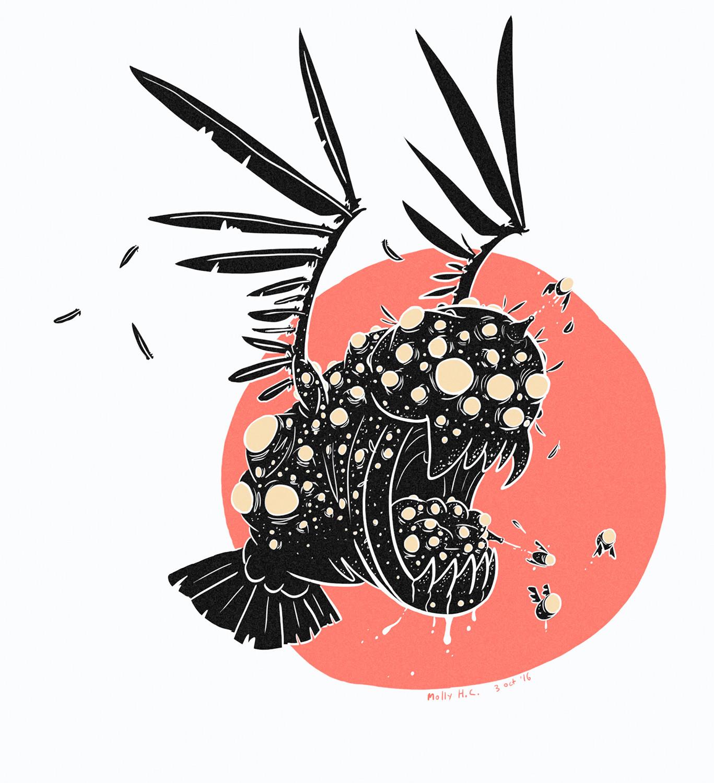 Acne Crow