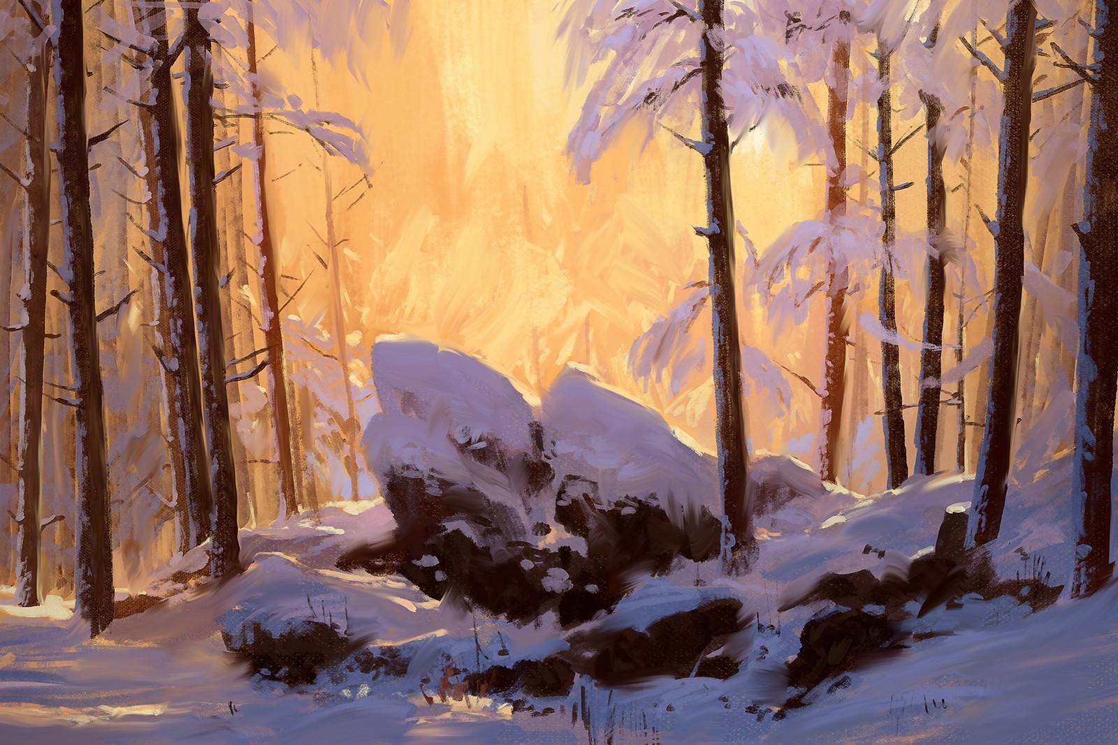 Bram sels snow study bram sels
