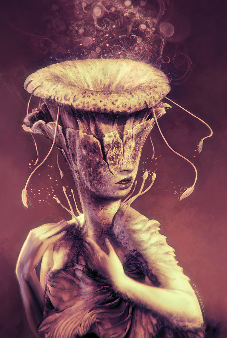 Fungi - Anthology Cover Art