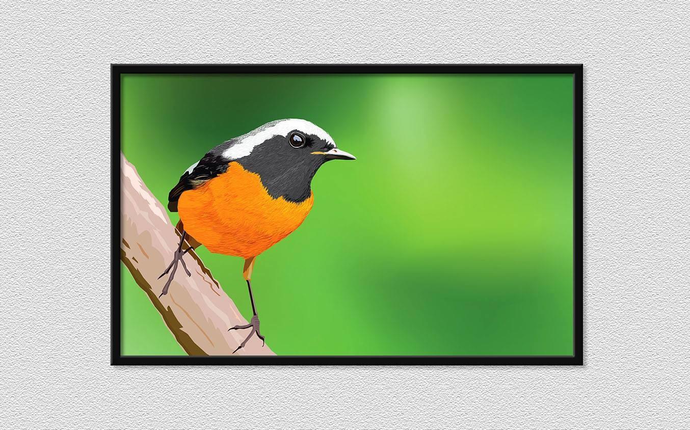 Rajesh sawant bird 3