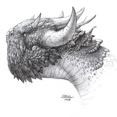 Edin durmisevic dragon hex 06