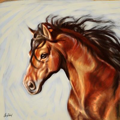 Okan bulbul horse portrait02