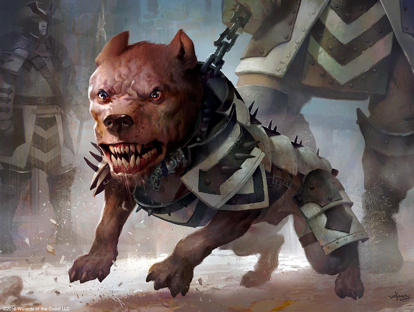 Svetlin velinov cathar s companion