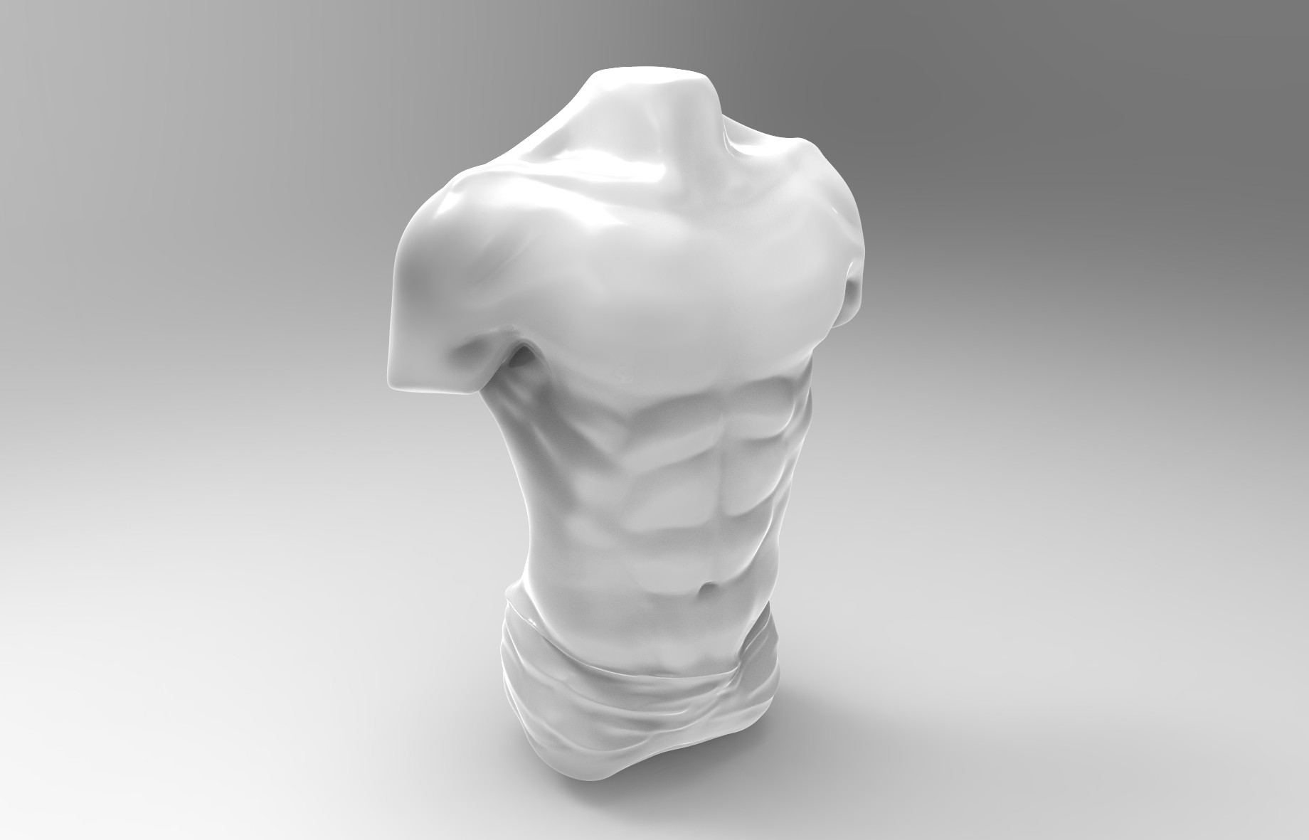 Bruno de maeyer male torso white shiny