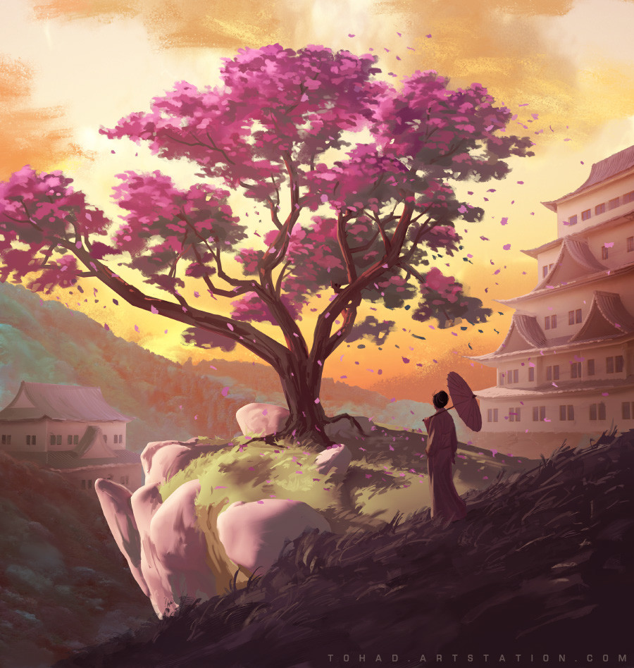 The Legend of the Cherry Tree (iello game)