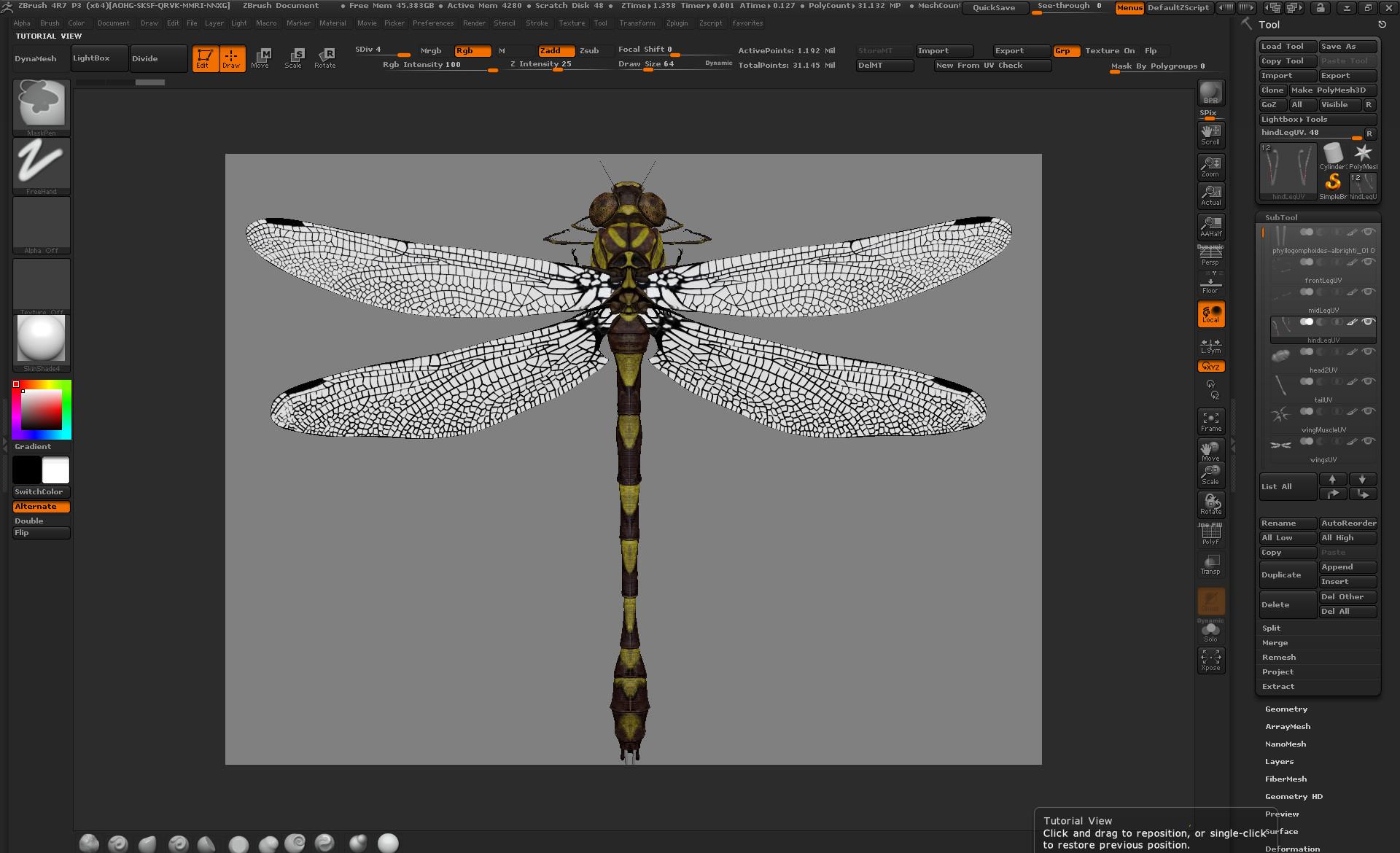 Eric keller dragonfly zbrush