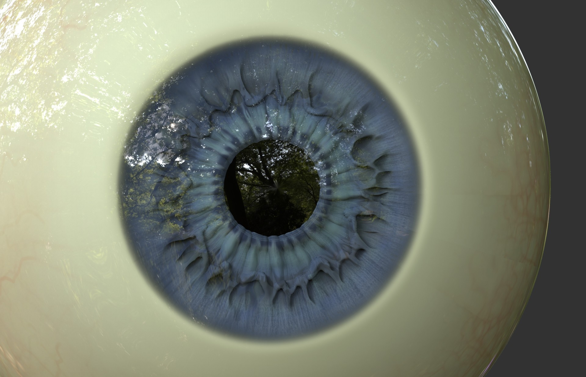 Alonzo emata eye 159