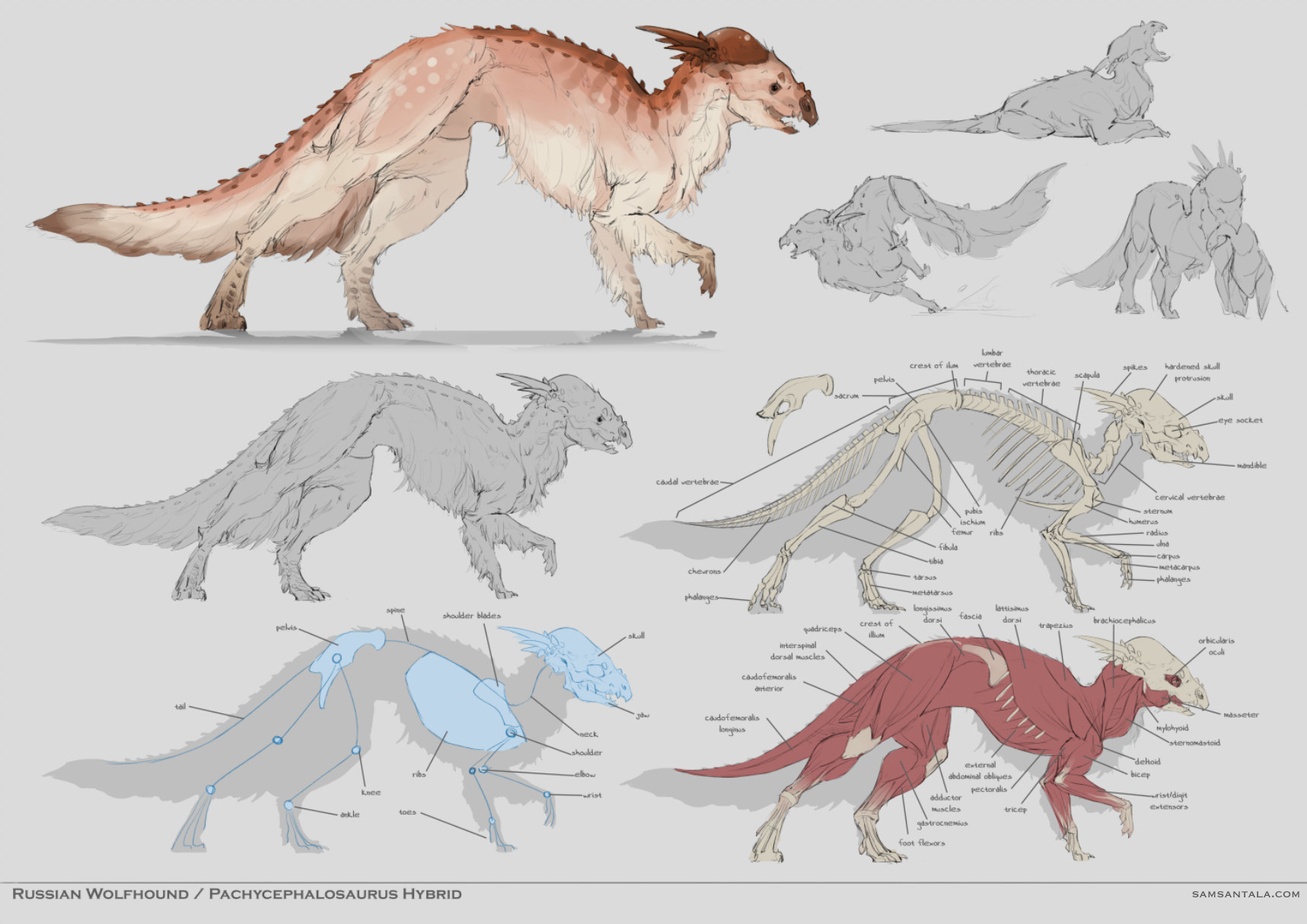 ArtStation - Dog/Dinosaur Studies, Sam Santala