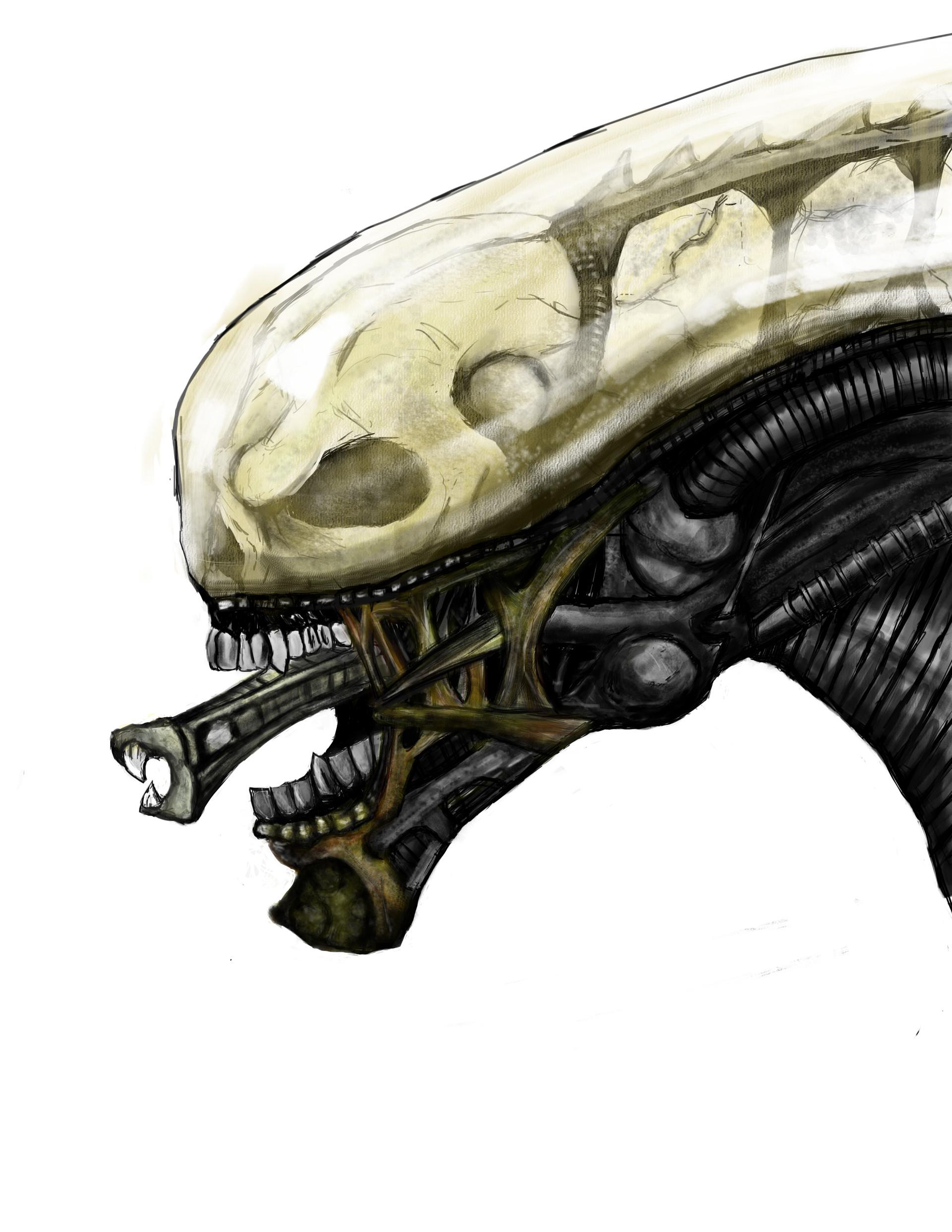 Resultado de imagen de xenomorph transparent first designs