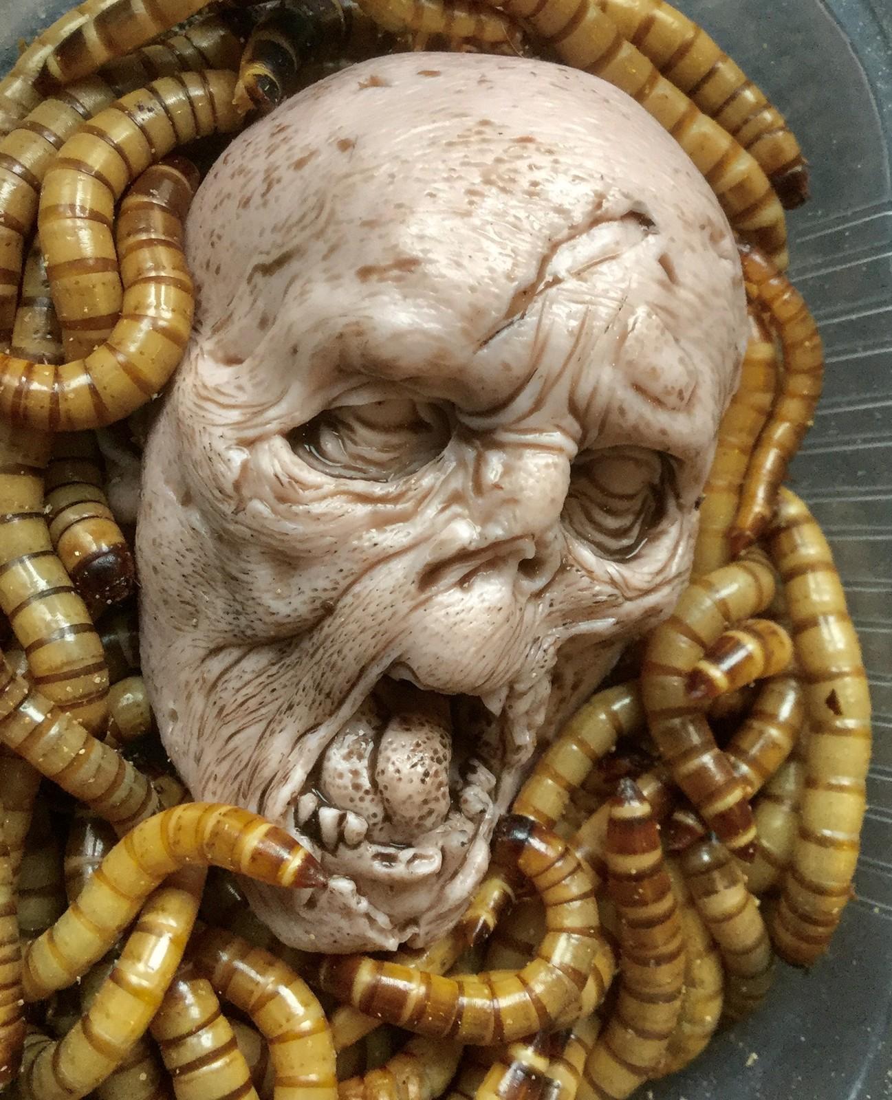 Zombi vs worms