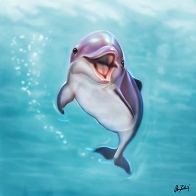 Okan bulbul dolphin01