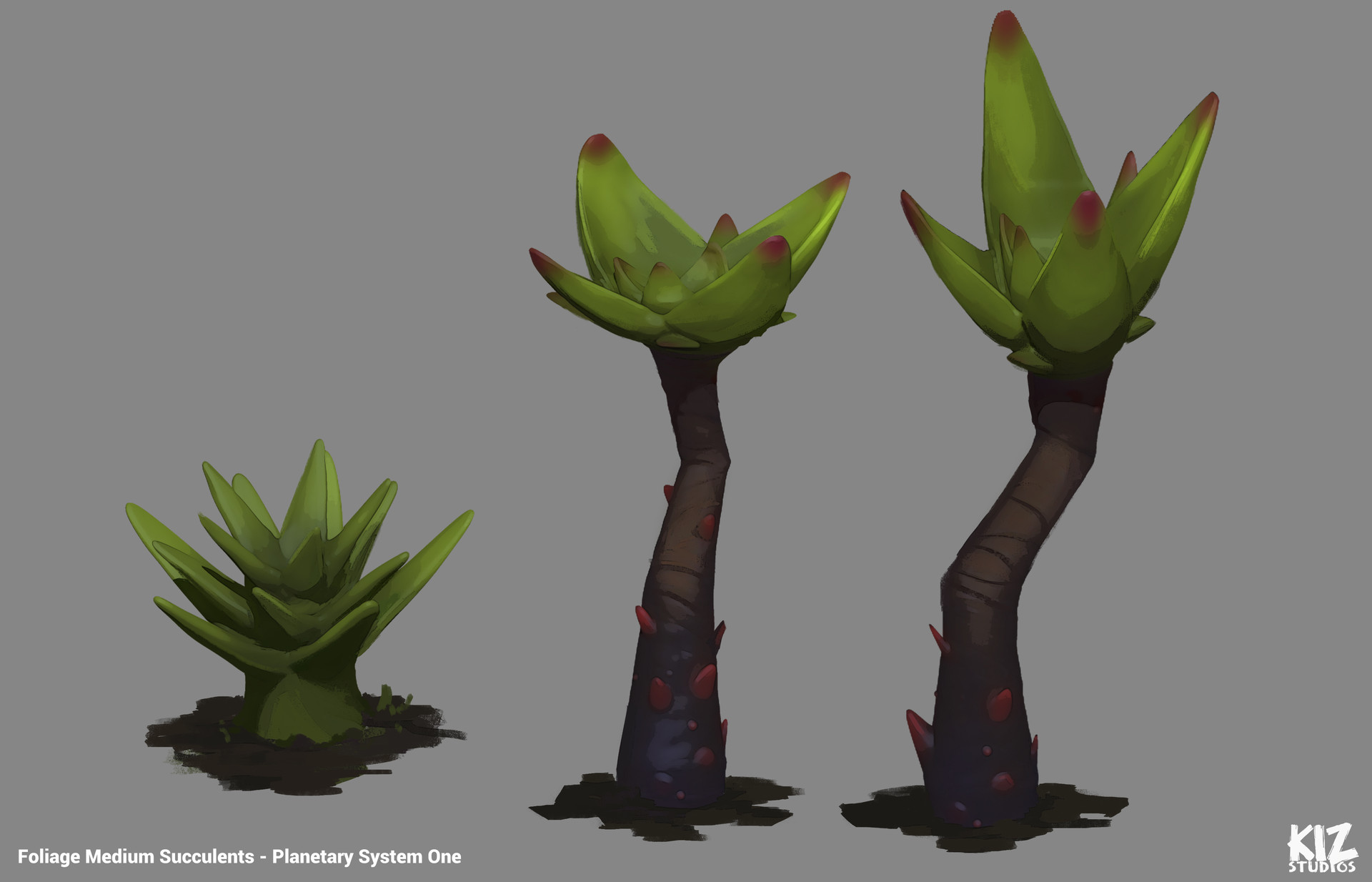 Tim kaminski asset environment succulent trees and plant