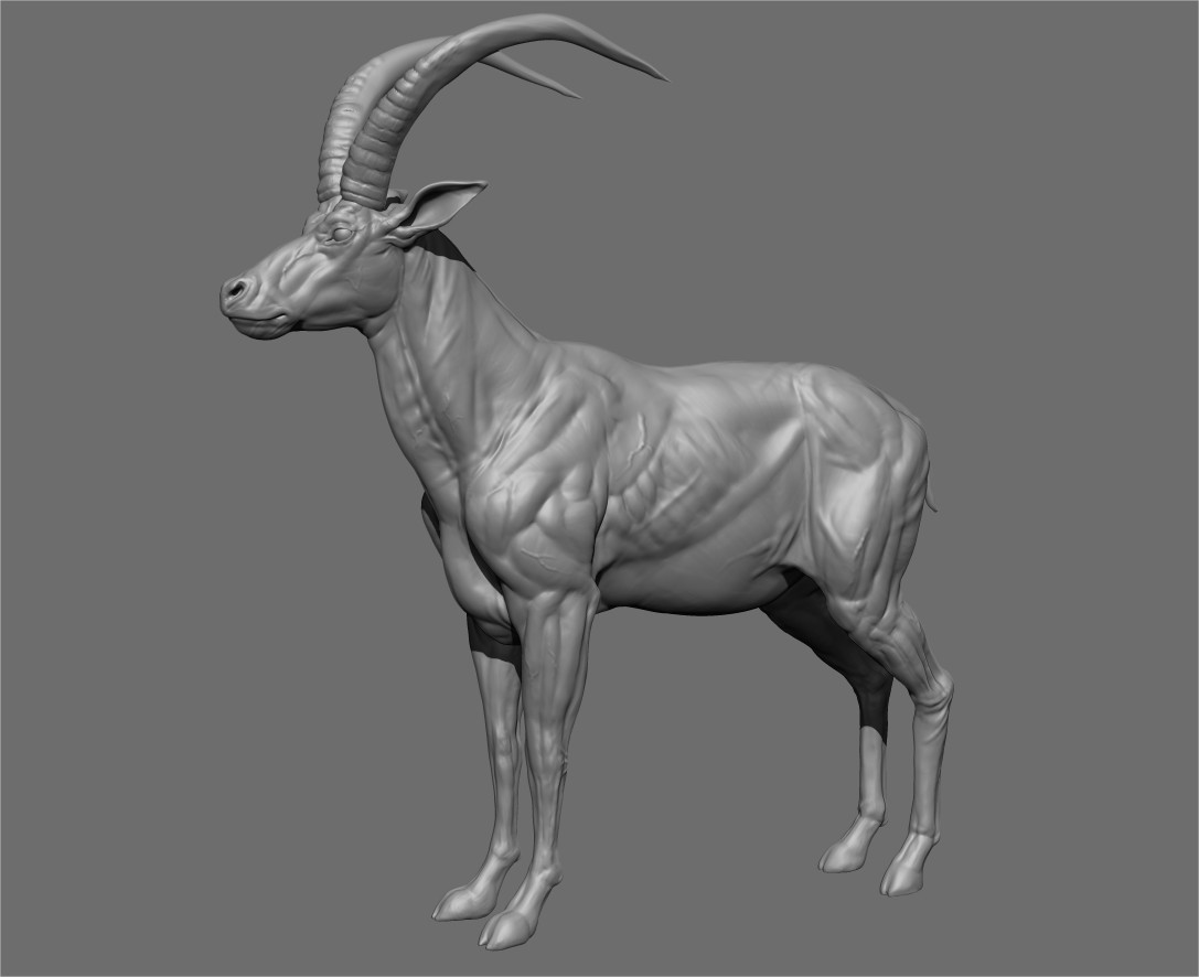 Gael kerchenbaum antelope presentation 002