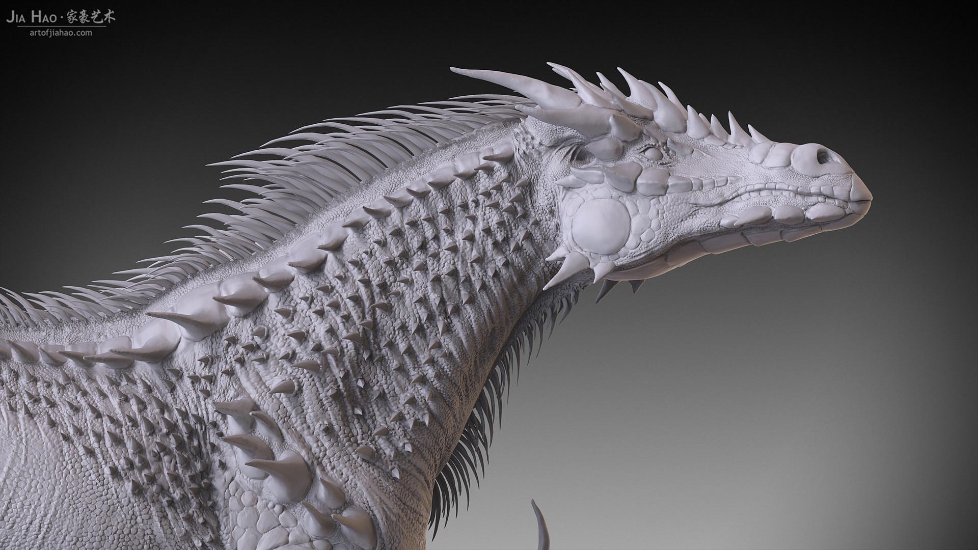 Jia hao dragonhorse 04