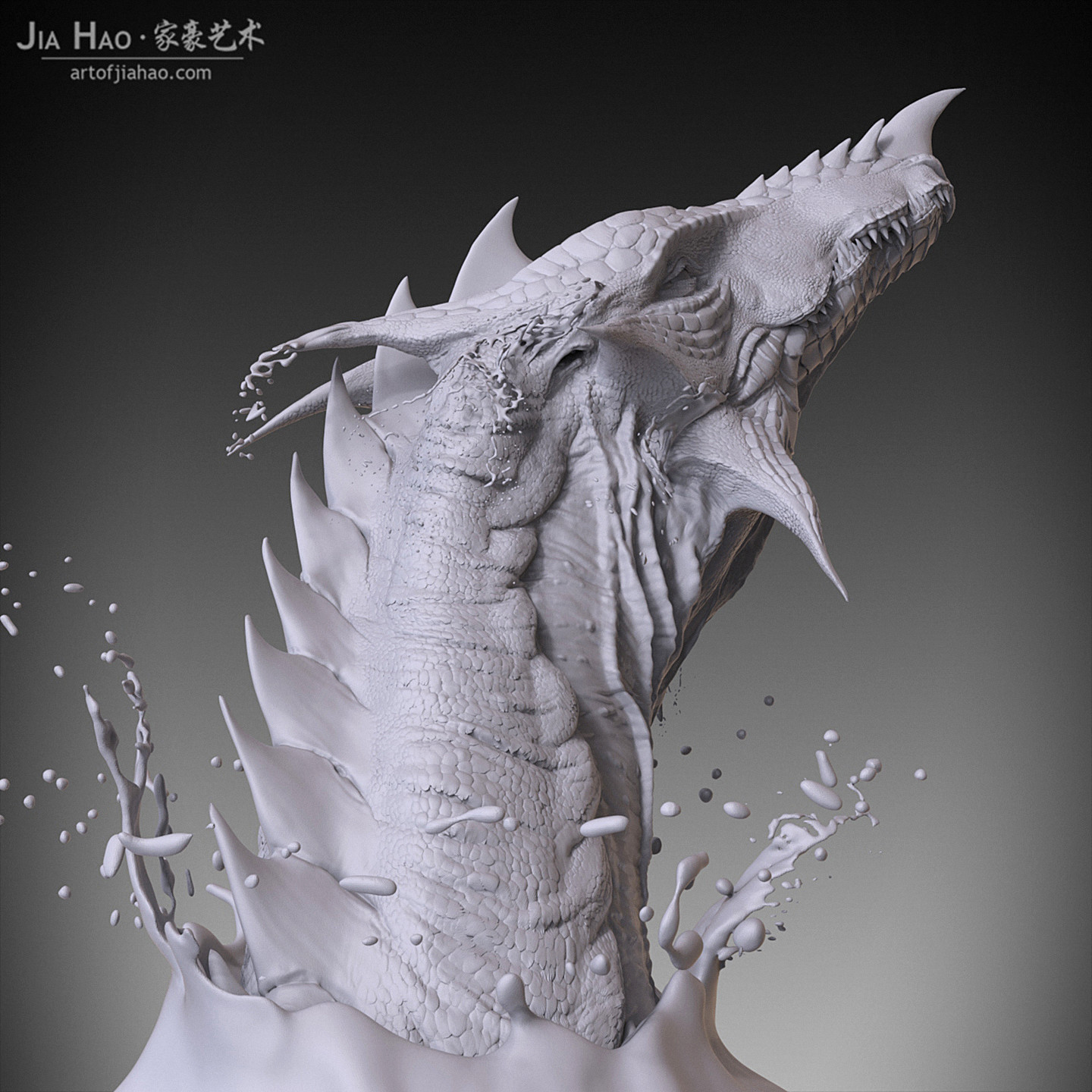 Jia hao waterdragon 03
