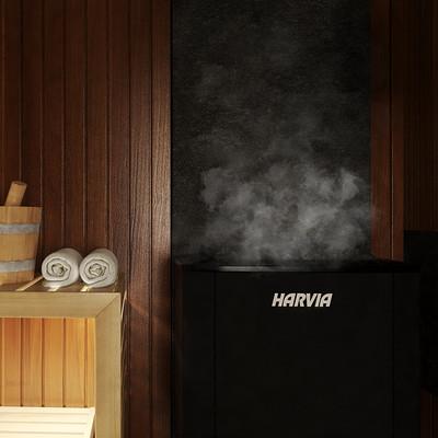 Pawel oleskow jpg sauna sucha 02