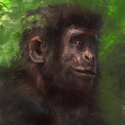 Antonio j manzanedo gorila manzanedo