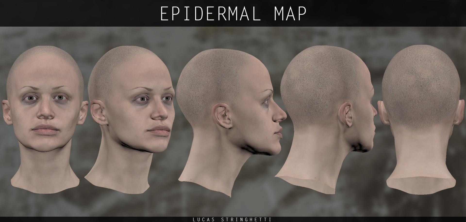 Lucas stringhetti 02 epidermalmap