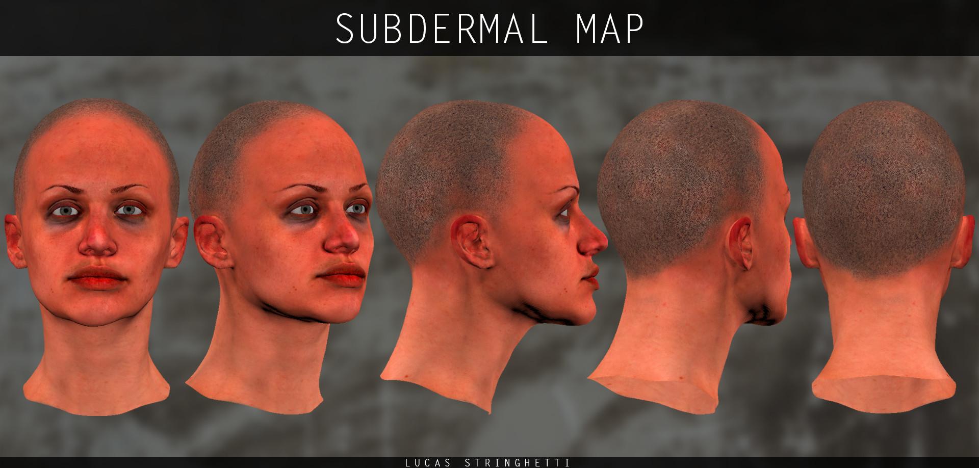 Lucas stringhetti 04 subdermalmap