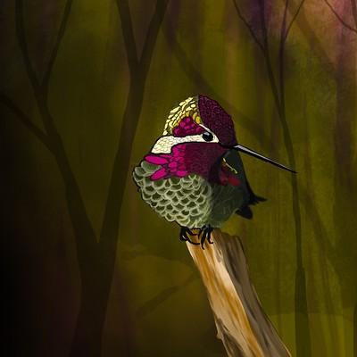 Skylar mcclellan hummingbird of sadness
