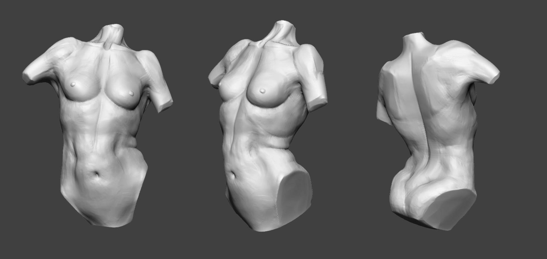 Dorine Laplanche Human Anatomy Practice