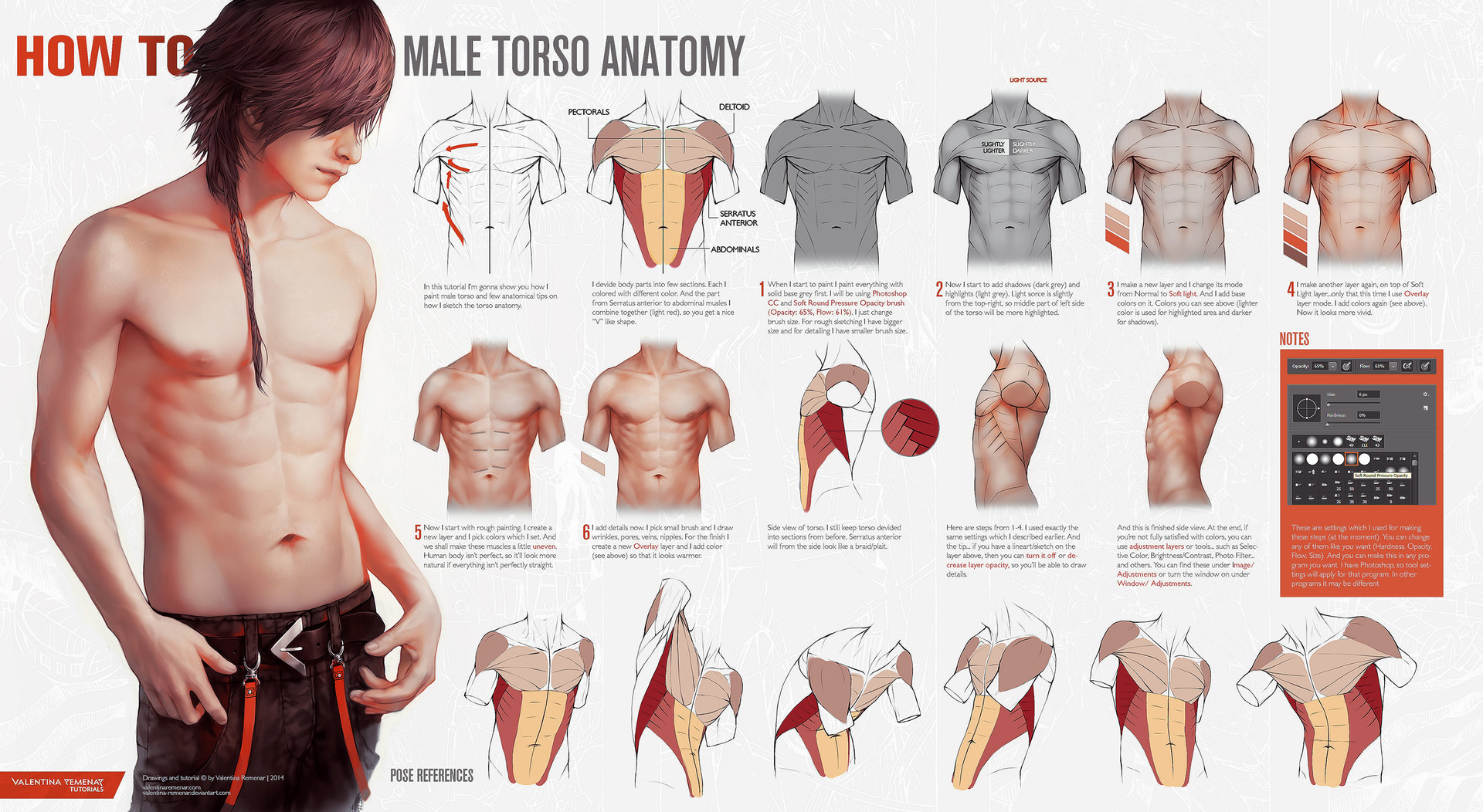 ArtStation - Male Torso Anatomy and Hand References, Valentina Remenar